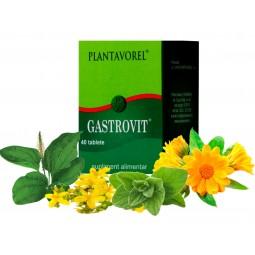 GASTROVIT - Fl. 40 tb.