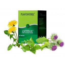 ANTITOX - Fl. 40 tb.