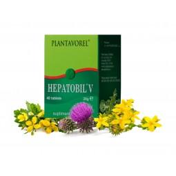 HEPATOBIL V - Fl. 40 tb.