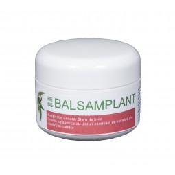 HEBE BALSAMPLANT - doze 40 g.